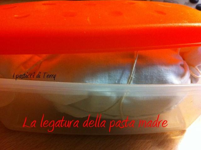 Pasta madre 3