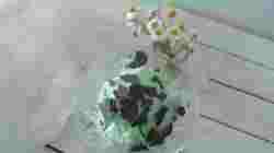 Gelato menta e cioccolato (4)