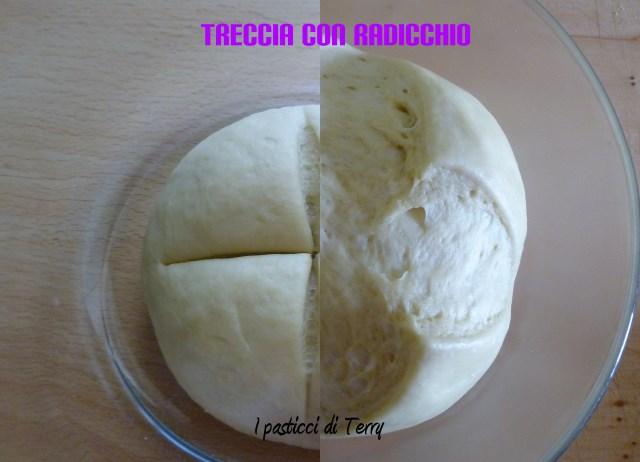 Treccia con radicchio e mozzarella (10)