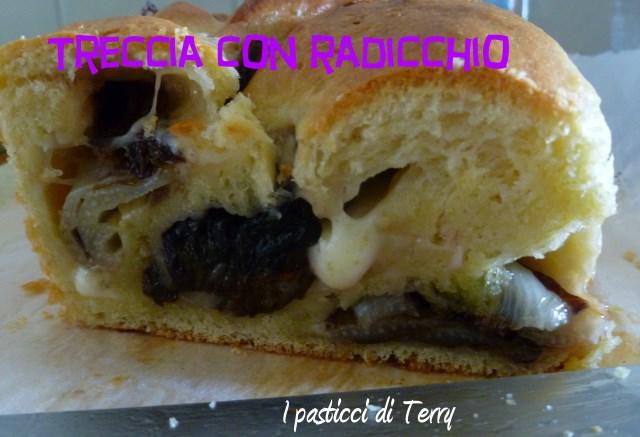 Treccia con radicchio e mozzarella (8)