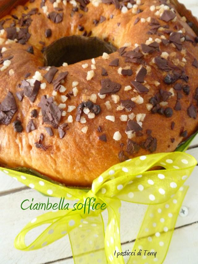 Ciambella soffice al cioccolato (12)