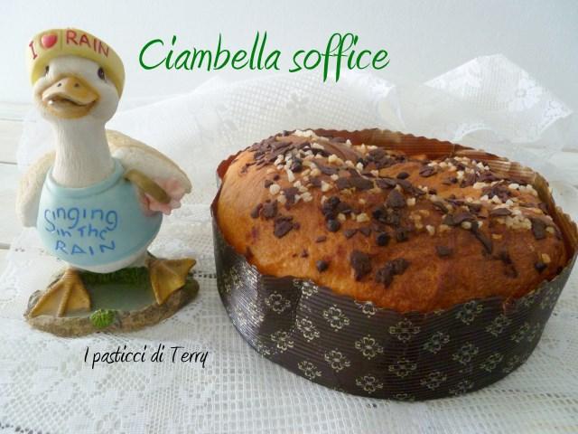 Ciambella soffice al cioccolato (14)