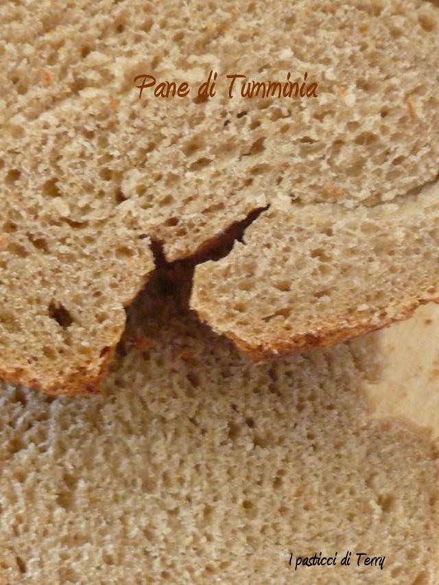 Pane di farina Tumminia (18)