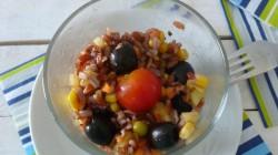 Riso rosso vegetale