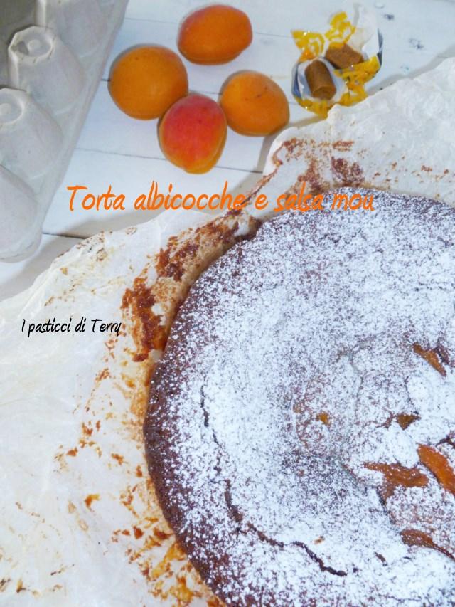 Torta albicocche e salsa mou (5)