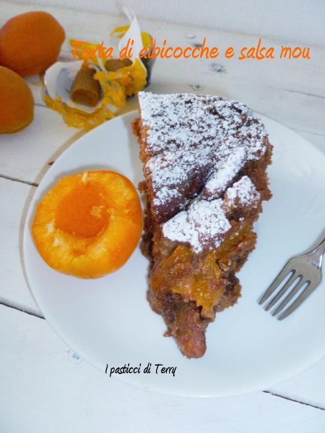Torta albicocche e salsa mou (8)