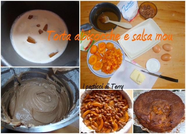Torta albicocche salsa mou