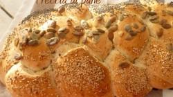 Treccia di pane ai semi vari (6)