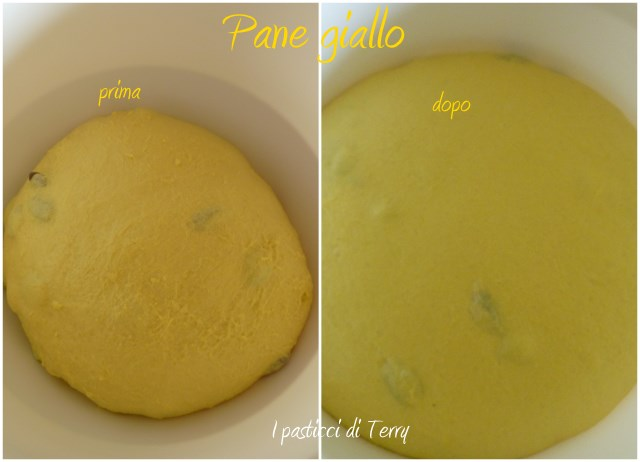 Sole giallo alle olive1
