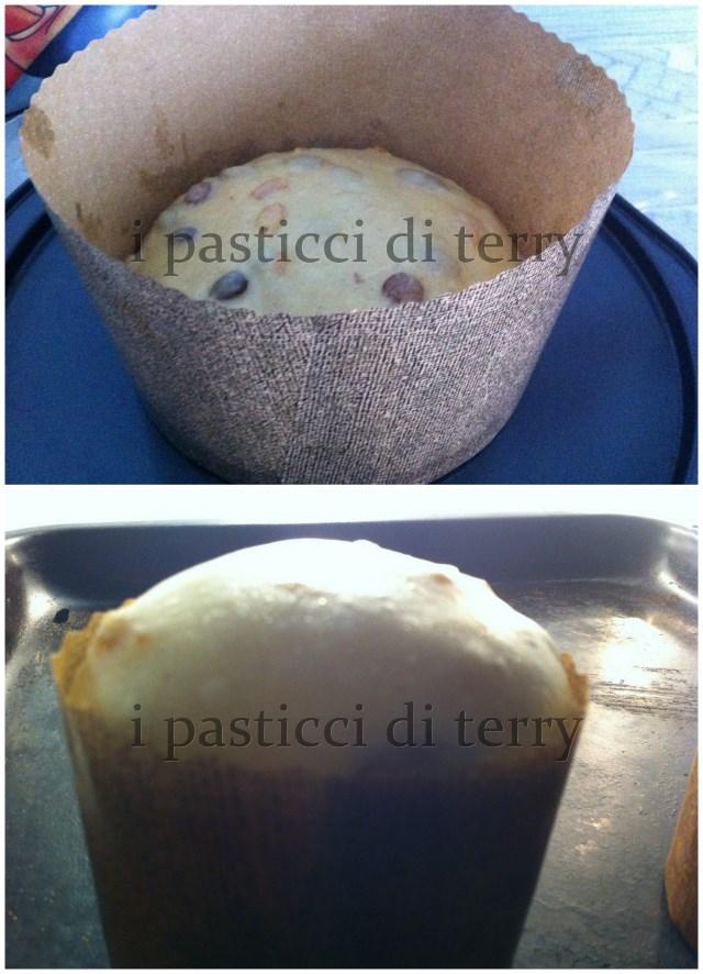 Panettone DiCarlo classico 21.113