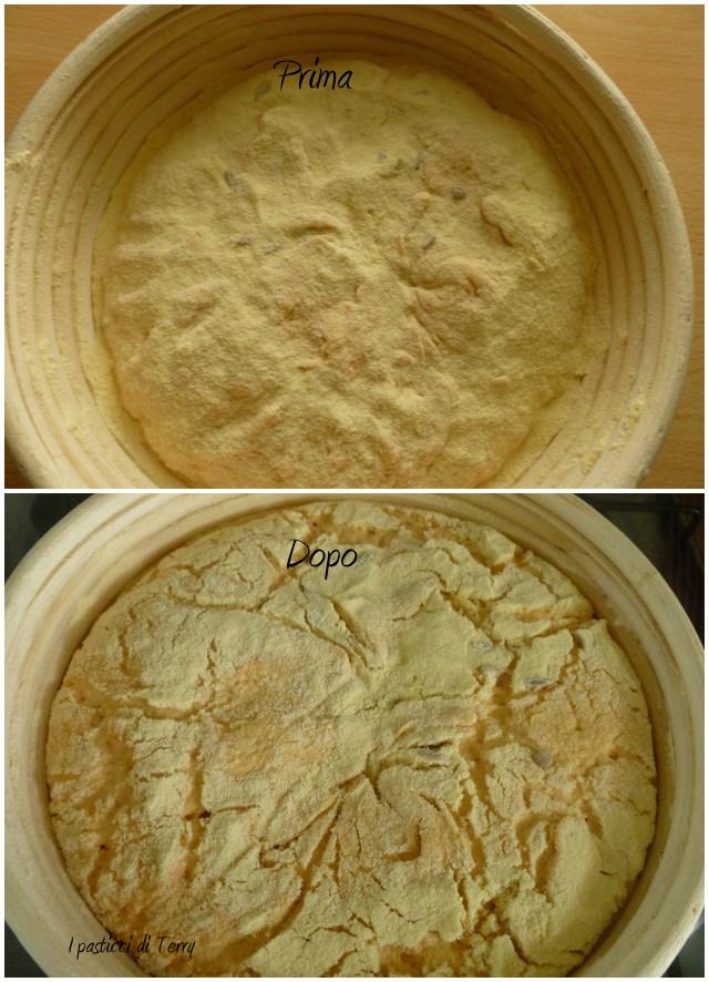 Pane - Pagnottone zucca e semi di girasole (25)