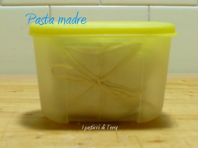Pasta madre 1