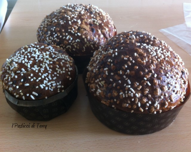veneziana-alle-ciliege-e-gocce-di-cioccolato-24