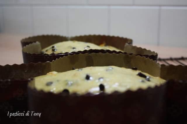 Colomba alla curcuma con mandarini e gocce di cioccolato (10)