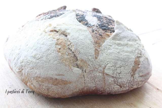 Pane semi integrale con farro e acqua di governo (19)