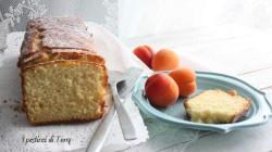 Plum cake morbido alle albicocca (10)