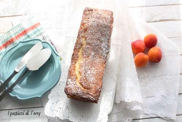 Plum cake morbido alle albicocche