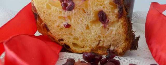 Panettone ai frutti rossi (10)